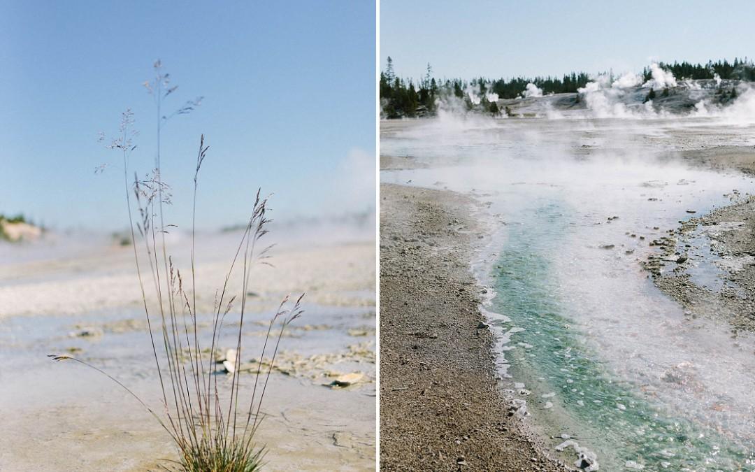 Reise in die USA – Teil 1: Yellowstone NP
